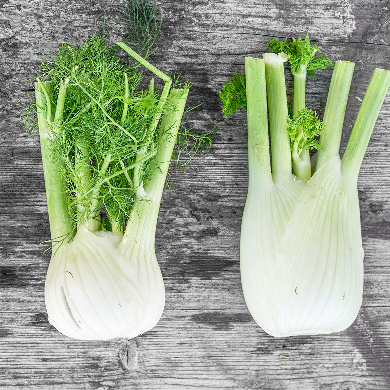 What Is Fennel and How Can I Use It?