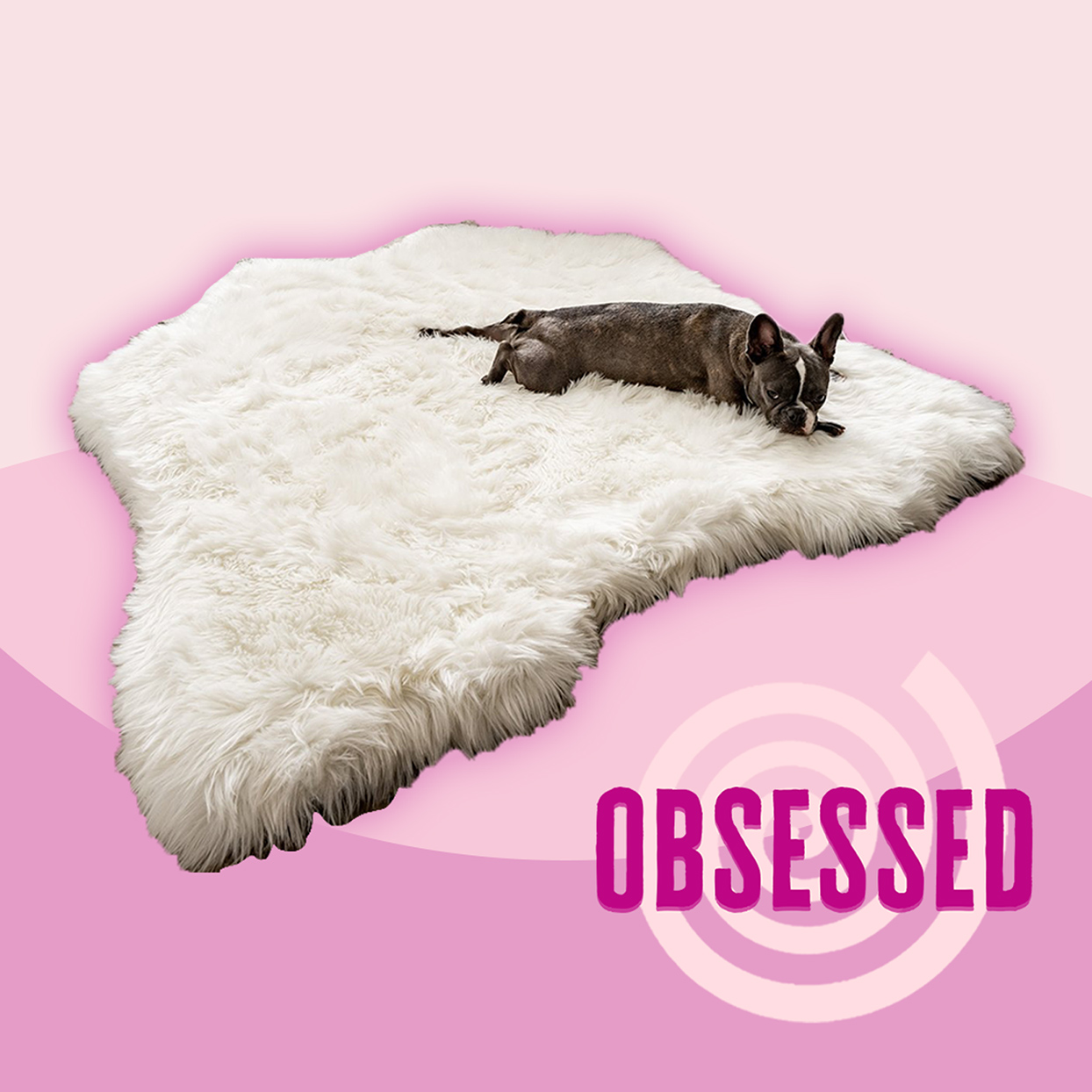 This Adorable Dog Bed Looks Like a Rug—and I Want One in Every Color