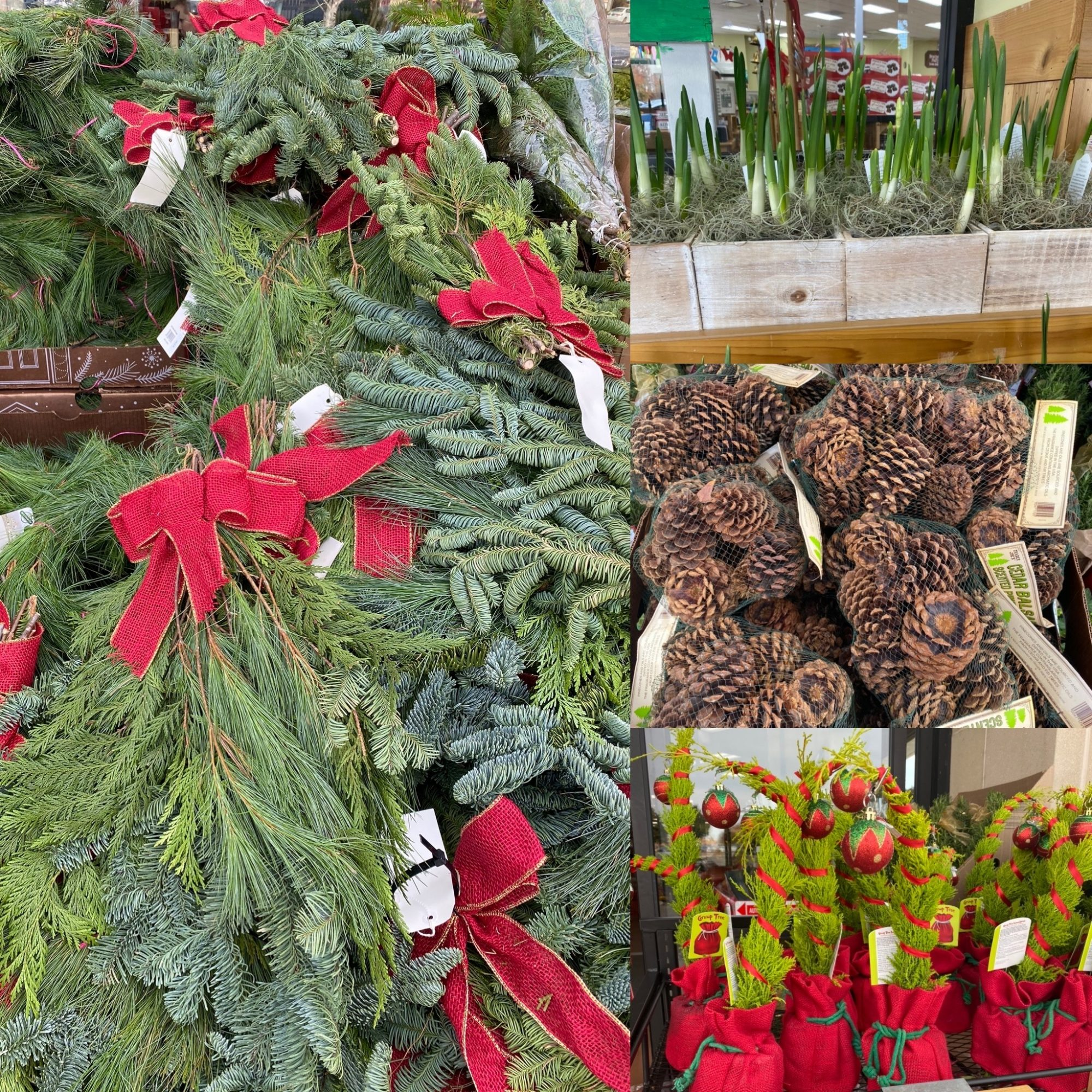 Trader Joe's Is Selling Everything You Need to Make Your House Look Like a Winter Wonderland