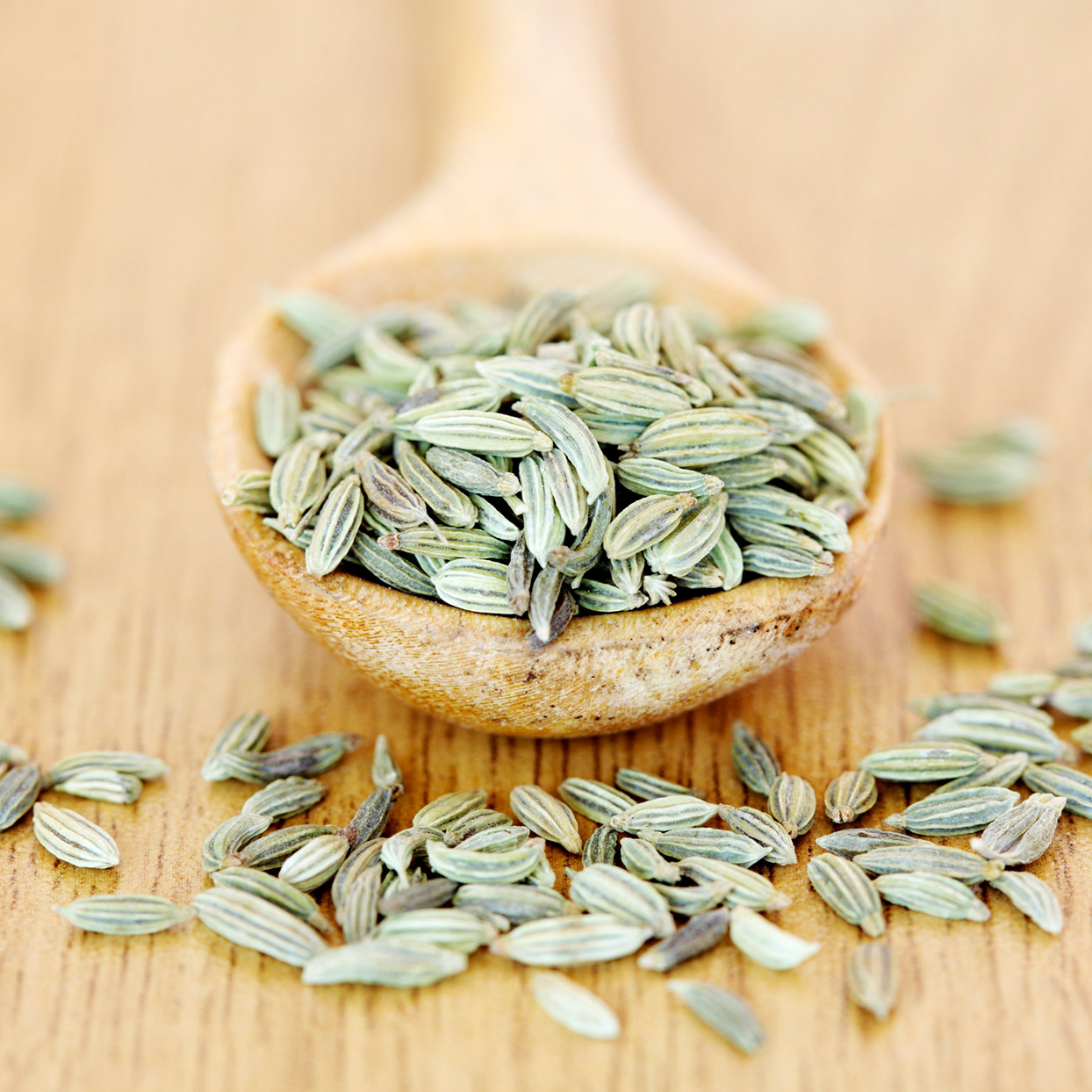 What Are Fennel Seeds and How Do You Cook with Them?