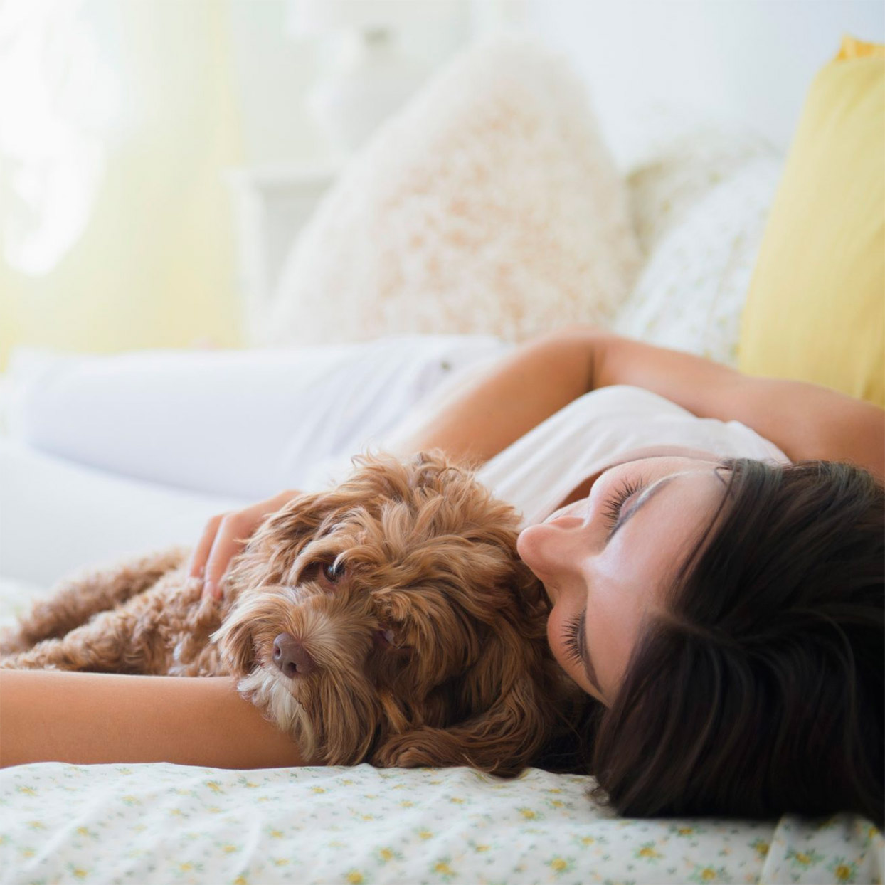 Sleeping With the Dog Is Better Than Sleeping With a Partner for Most Women
