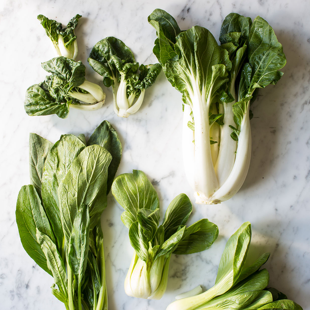 Get to Know Bok Choy—the Crunchy Cruciferous Veggie You Need to Try