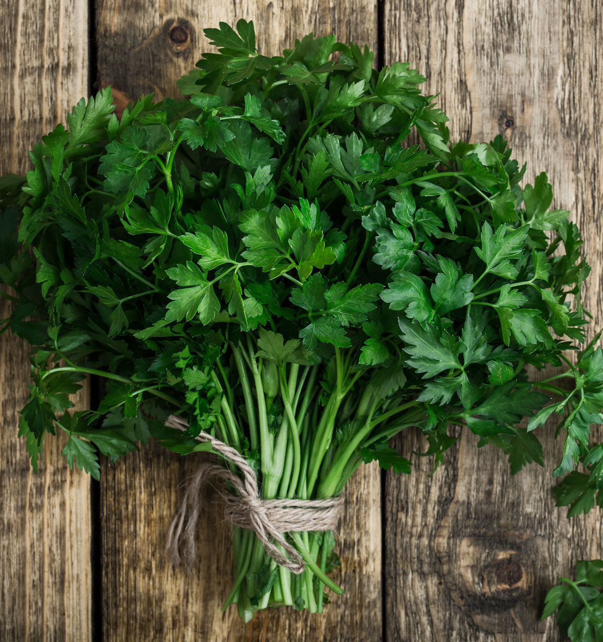 Our Test Kitchen Swears by This Hack for Bringing Wilted Herbs Back to Life