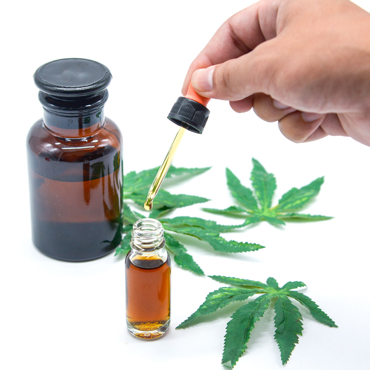 Will Taking CBD Oil Help You Lose Weight?