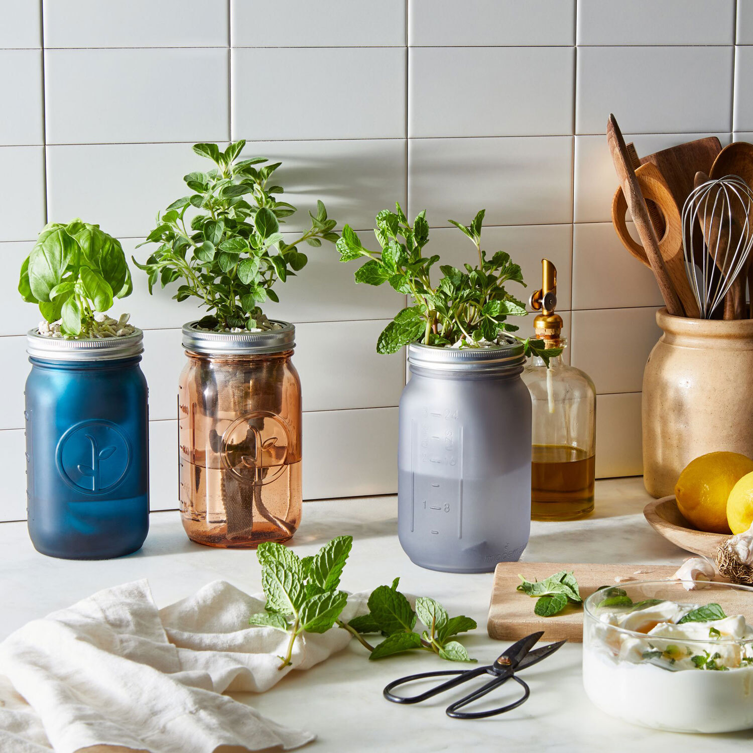 This Self-Watering Herb Jar Is Perfect for Beginner Gardeners