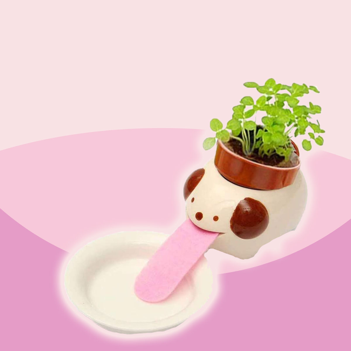 These Self-Watering Planters Might Be the Cutest Things I've Ever Seen