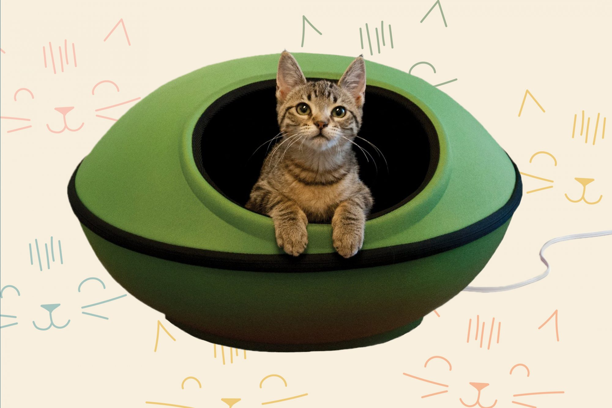 The 13 Best Heated Cat Beds Daily Paws