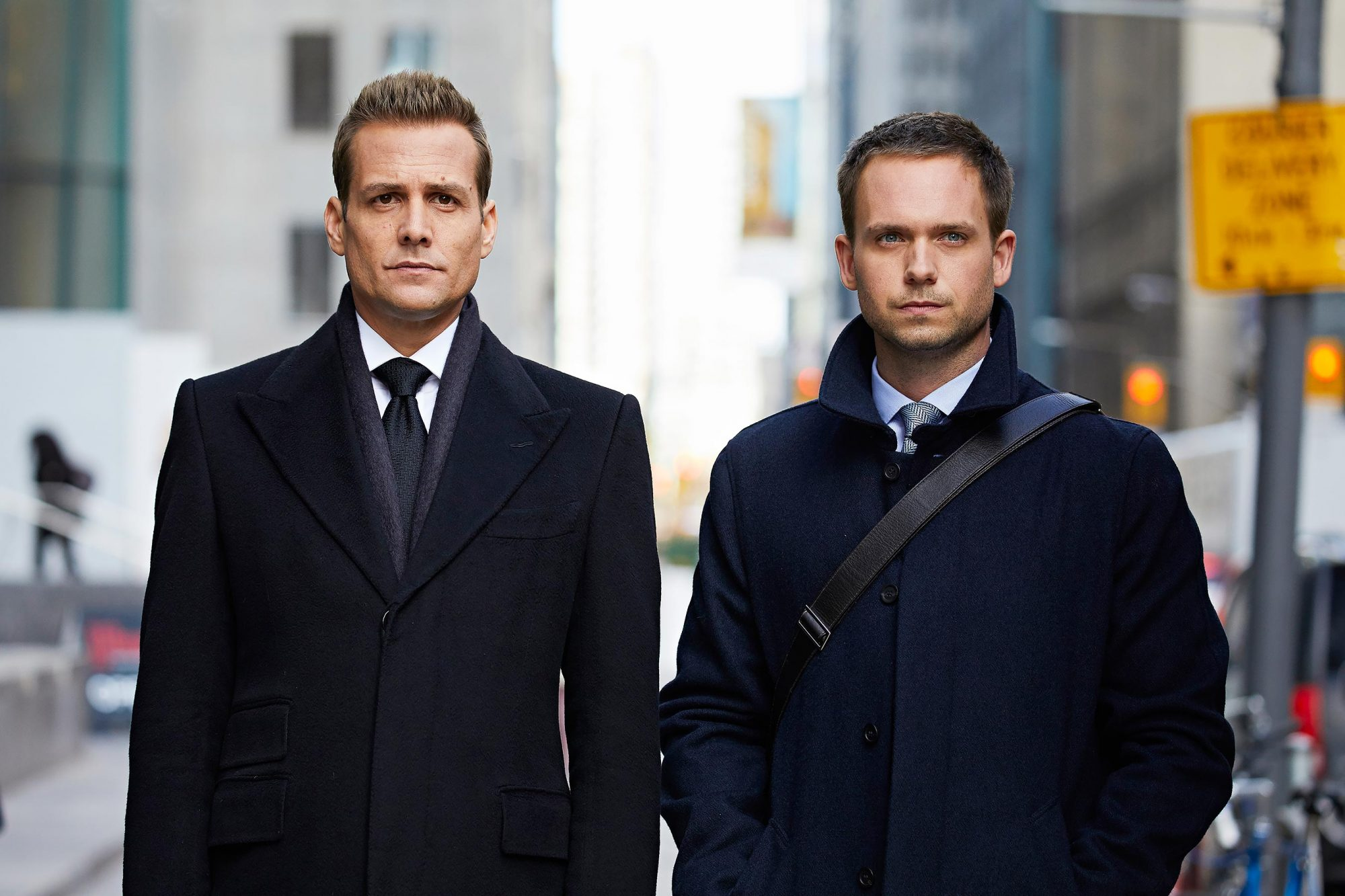 13++ Suits 8 Temporada Online