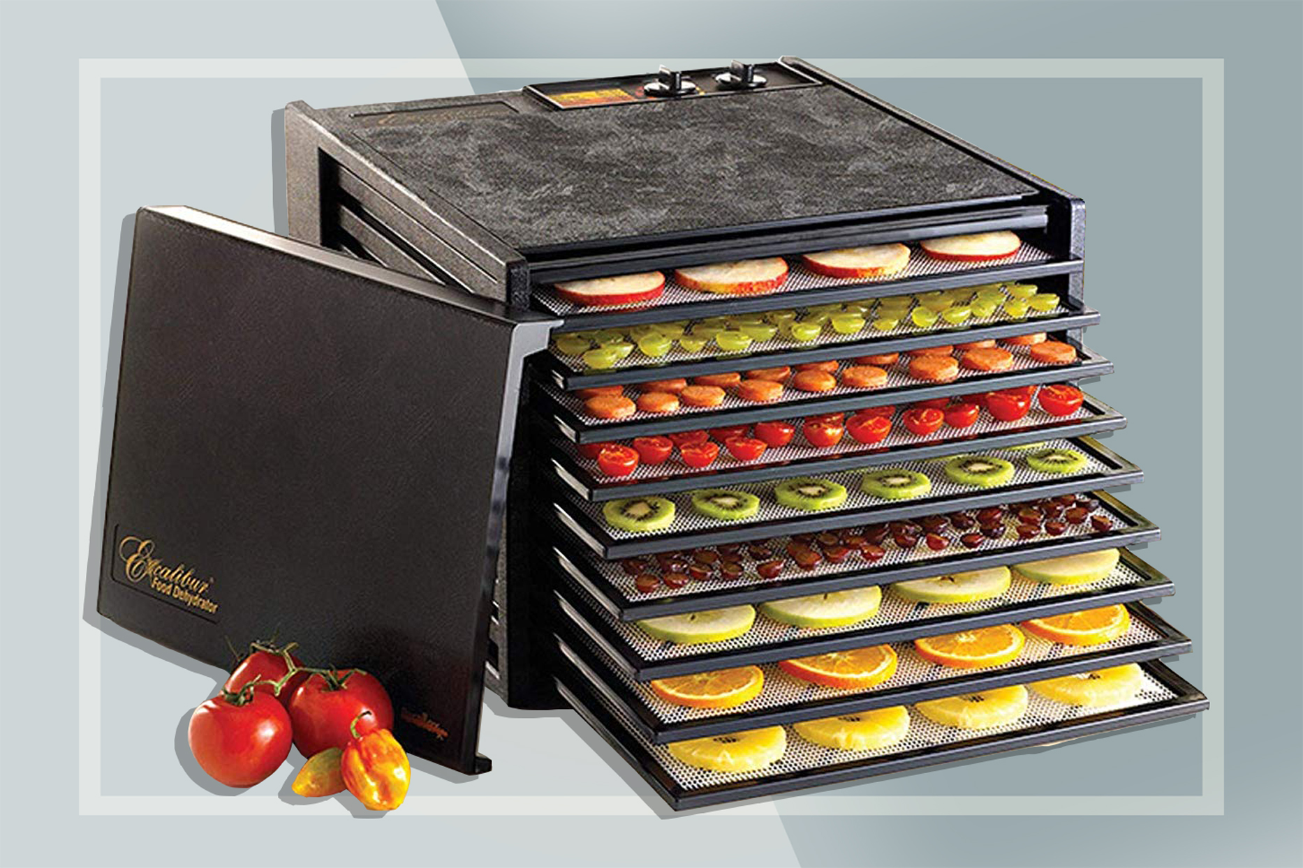 The 9 Best Food Dehydrators for 2021, According to Reviews | Food & Wine